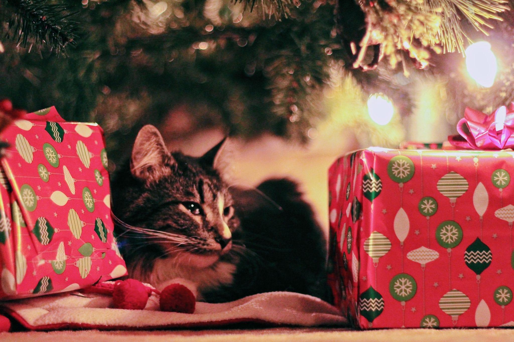 Secret Santa….